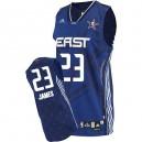 Maillot bleu de NBA LeBron James authentiques hommes - Adidas Cleveland Cavaliers 23 2010 All Star
