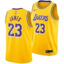 Los Angeles Lakers Lebron James Nike NBA hommes icône Échangiste Maillot