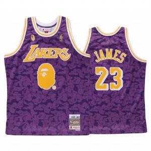 Maillot LeBron James BAPE X Mitchell Purple 1996-97